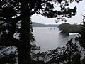 View down Percuil River in the St Mawes direction - geograph.org.uk - 382121.jpg