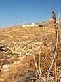 View near Kalamos.jpg