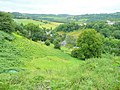 View over Lower Lydbrook - geograph.org.uk - 1427690.jpg