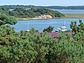View towards Long Island, Poole Harbour - geograph.org.uk - 1446817.jpg