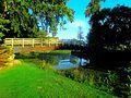 Vilas Park Woodland Bridge 2 - panoramio (1).jpg