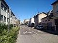 Villeurbanne - Rue Roger Lenoir (fév 2020).jpg