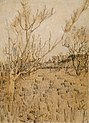 Vincent van Gogh - Orchard with Arles in the Background (1888).jpg