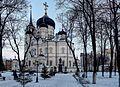 Voronezh Annunciation Cathedral P1030826 2475.jpg