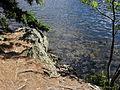 Vylet k Cernemu jezeru Sumava - 9.srpna 2010 201.JPG