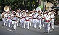 Waikiki St. Patricks Day Parade - Royal Hawaiian Band (6870252102).jpg