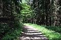 Wanderweg im Muttental - panoramio (2).jpg