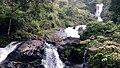 Water falls - in coorg.jpg