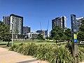Waterfront Park, Newstead, Queensland.jpg