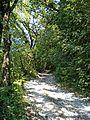 Way to Parmigno 3.jpg