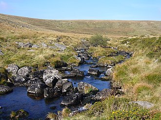 West Dart River - Upper reaches of the West Dart.