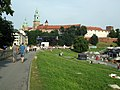 Widok na Wawel (9220878743).jpg
