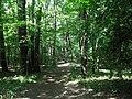 Wienerwald - panoramio.jpg