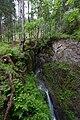 Wiki takes Nordtiroler Oberland 20150606 Kronburger Bach 7293.jpg