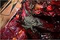 Wildflecken accident victim autopsy, 2017(three).jpg