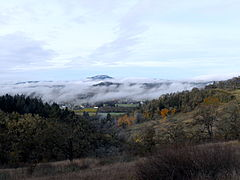Fog in valley