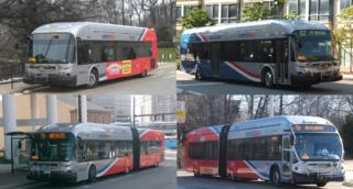 Metrobus (Washington, D.C.)