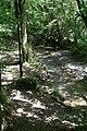 Woodland Stream - geograph.org.uk - 214699.jpg