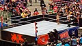WrestleMania 32 2016-04-03 16-45-32 ILCE-6000 8528 DxO (27652107891).jpg