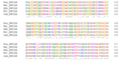 ZNF226 Ortholog Multiple Sequence Alignment 2.png