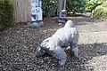 ZSL London - Gorilla Kingdom sculptures (01).jpg