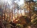 Zwischen Ockerfelsen in Roussillon.jpg