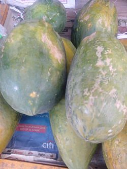 """Carica papaya of Salem"".jpg"