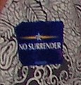 """No Surrender"" McCain campaign sticker at event in Des Moines (1368795717).jpg"
