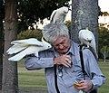 (1)Man feeding birds-2.jpg