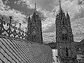 (La Basílica del Voto Nacional, Quito) pic. l.JPG