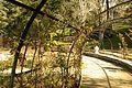 ® S.D.I. MADRID PARQUE DEL OESTE - ROSALEDA - ANILLO - panoramio (7).jpg