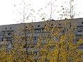 Борщаговка, пр.Королёва, 4. вид из окна. осень 2009 - panoramio.jpg