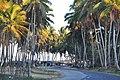 Доминиканская Республика - panoramio (2).jpg