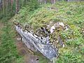 Камни около Чусовой (Rosk near Chusovaya river) - panoramio.jpg