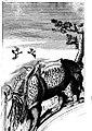 Логическая модель носорога.jpg