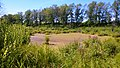 Озерцо. Волчья яма. Чистопольский р-н. РТ. Июль 2014 - panoramio.jpg