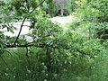 Парк шума Гази Баба во мај (106).JPG