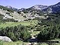 Пасящи коне в местността Равнако над х.Вихрен - panoramio.jpg