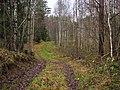 Старая дорога к заброшенной деревне Мелтени - panoramio.jpg