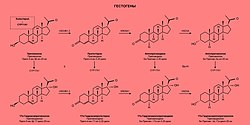 Sex steroid - Wikipedia