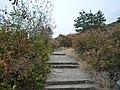 """Стъпалата към входа на """"Магурата"""" - panoramio.jpg"""