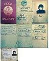 Цой Виктор Робертович, паспорт.jpg