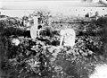 בנות בחוות העלמות באיסוף ירקות 1912 - iמושבה כנרתמוזיאוןi btm5561.jpeg