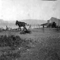 טיול קבוצתי של ציונים בגרמניה לארץ ישראל ב- 1913. מגדל(Migdal). צלם אלברט בר-PHAL-1619700.png