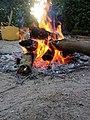 صورة لاشتعال النار الراقية.jpg