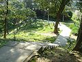 中坑山東北翼的登山步道20100228.JPG
