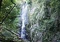 司馬庫斯司立富瀑布 Smangus Serifu Waterfall - panoramio.jpg