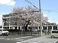 江南市役所 - panoramio.jpg