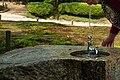 泉 Fountain - panoramio.jpg