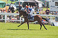 035 Epsom Derby 2015 - Hans Holbein and Seamie Heffernan going to post (18402841919).jpg